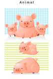 Animal background with Pigs Stock Image