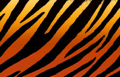 Animal background. Background texture of orange tiger skin vector illustration