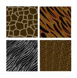 Animal Backgrounds Royalty Free Stock Images