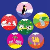Animal badges Stock Photos