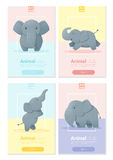 Animal banner with Elephant for web design Stock Photos