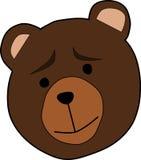 Animal, Bear, Face, Thinking Stock Image