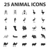 Animal and beast 25 black simple icons set for web Royalty Free Stock Photos