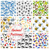 Animal, bird, fish and insect seamless pattern. S. Lion and horse, owl, butterfly and snake, tuna and bee, eagle and spider, giraffe and ostrich, dragonfly and Stock Photography