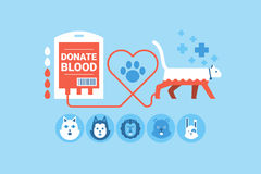 Animal Blood Donation Royalty Free Stock Photo
