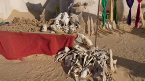 Animal bones, skulls, desert roses and scarves on street market. Animal bones, skulls, desert roses and scarves on arabian street market in Nefta, Tunisia, North stock video footage