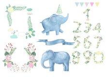 Animal bonito e flores do clipart digital do elefante para cartazes do cartão, do quadro e da fita, no fundo branco para ilustração stock