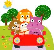 Animal and car Stock Photos
