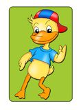 Animal card 2 - duckling Stock Photos