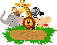 Animal cartoon Stock Images