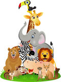 Animal cartoon Royalty Free Stock Image