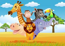 Animal cartoon Royalty Free Stock Photography