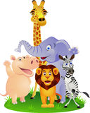 Animal cartoon Stock Image