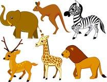 Animal cartoon Royalty Free Stock Photo
