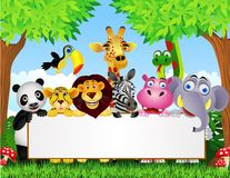 Animal cartoon and blank sign Stock Photos