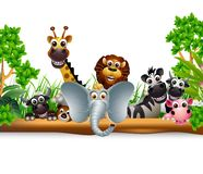 Animal cartoon with blank sign and tropical plant Stock Images