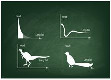 Animal Cartoon of Fat Tailed and Long Tailed Distributions Stock Photos