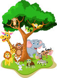 Animal cartoon with forest background Stock Images