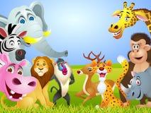 Animal cartoon group Stock Photography