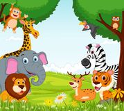 Animal cartoon in the jungle Stock Image