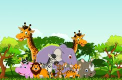 Animal cartoon with tropical forest background Royalty Free Stock Images