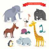 Animal cartoons, safari, wild nature Royalty Free Stock Photography