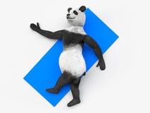 Animal character personage panda doing yoga Royalty Free Stock Photography