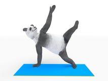Animal character personage panda doing yoga Stock Photos