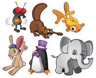 Animal Characters. Six fun animal characters. A good pack of cartoons for various uses Stock Photos