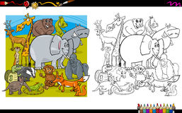 Animal characters coloring book Royalty Free Stock Photos