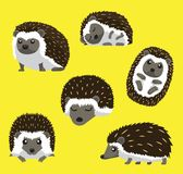 Hedgehog Six Poses Cute Cartoon Vector Illustration. Animal Characters EPS10 File Format Royalty Free Stock Photo
