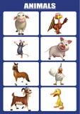 animal chart Stock Photos