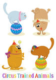 Animal, chien et Cat Set qualifiés illustration stock