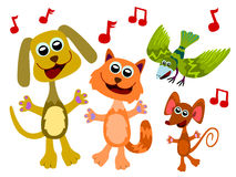 Animal choir Royalty Free Stock Photo