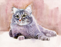 Animal Collection: Cat. Beautiful watercolor stock illustration