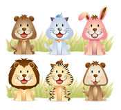 Animal Collection Part 1 Stock Photography