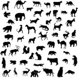 Animal collection silhouettes Royalty Free Stock Photography
