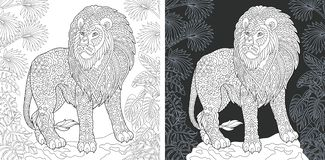 Animal Coloring Page. Animal. Coloring Page. Coloring Book. Colouring picture with lion drawn in zentangle style. Antistress freehand sketch drawing. Vector vector illustration
