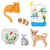 Animal companions set Royalty Free Stock Photos