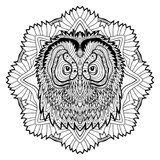 Animal concept. Line design. The head of a owl. Stock Images