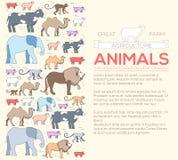 Animal  concept of lion, monkey, monkey, camel, elephant, cow, pig, sheep. Vector illustration background with ottoman Stock Photo