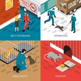 Animal Control Isometric Design Concept. Animal control services 4 isometric icons square concept with stray dog catching and insects extermination vector Royalty Free Stock Photos