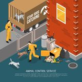Animal Control Service Isometric Poster. Animal control service catching stray abandoned and lost dogs eating from garbage cans isometric poster vector Stock Photos