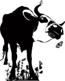 Animal cow vector illustration