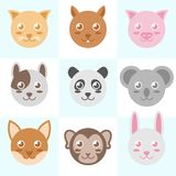 Animal cute circle head vector illustration , cat,squirrel,pig,dog,panda,koala,fox,monkey,rabbit royalty free illustration