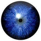 Animal 3d eyeball colorized texture. Isolated white background, little black pupil, eye stock photography