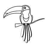 Animal d'oiseau de toucan illustration stock