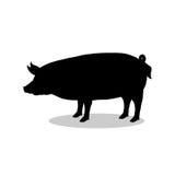 Animal da silhueta do preto do mamífero da exploração agrícola de porco Imagem de Stock
