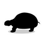 Animal da silhueta do preto do réptil da tartaruga da terra ilustração royalty free