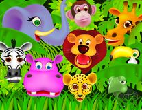 Animal dans la jungle Images stock